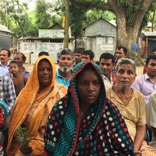 Plant clinics in Bangladesh: are farmers losing less and feeding more?