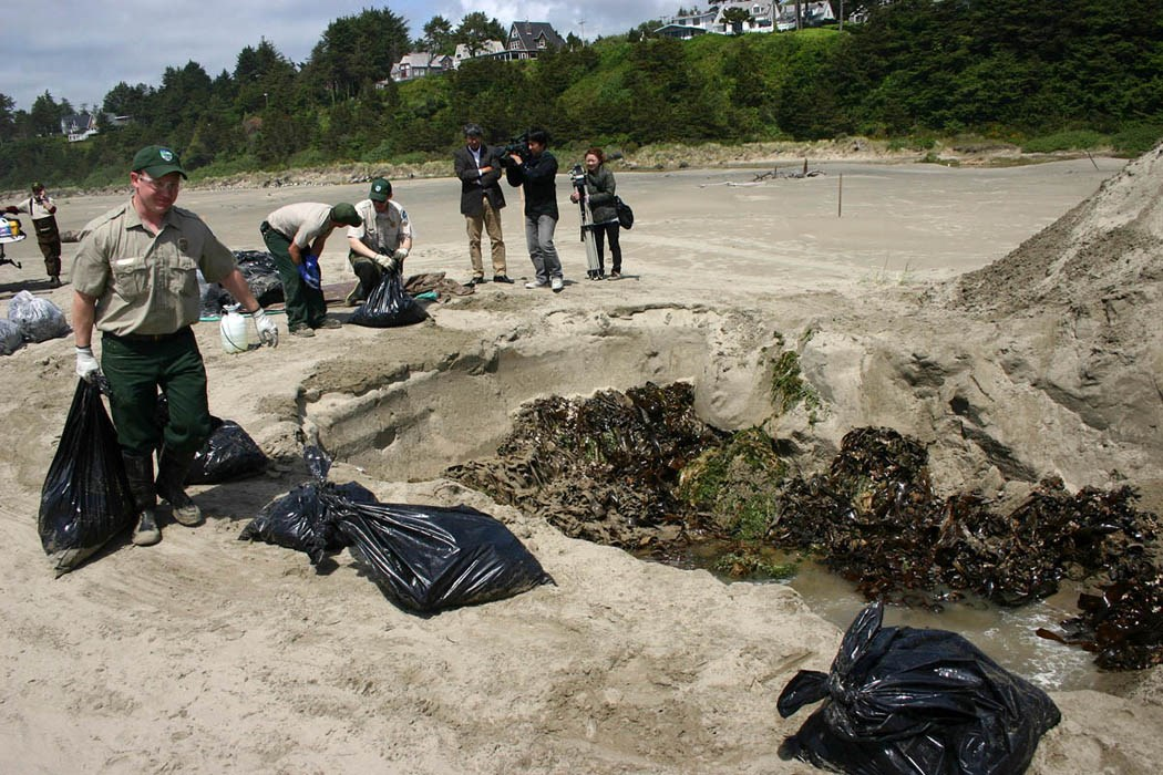 Oregon Department of Fish & Wildlife staff and volunteers removed around a ton and a half of plant and animal material, which were then buried, landward from the site approx. 2.4m deep far above the furthest reach of high tides and storm surges.