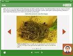 PestSmart eLearning Module 1 screenshot