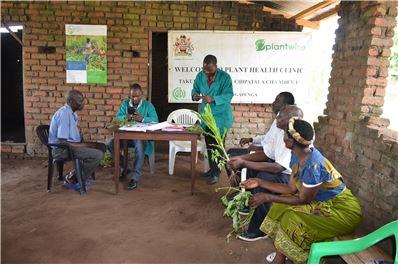 Malawi plant clinic