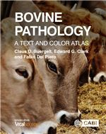 Book cover for Bovine pathology: a text and color atlas.