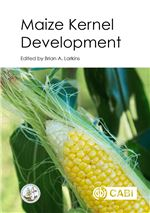Book cover for Maize kernel development.