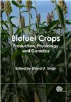 Cover for Biofuel crops: production, physiology and genetics.