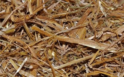 A pile of straw.