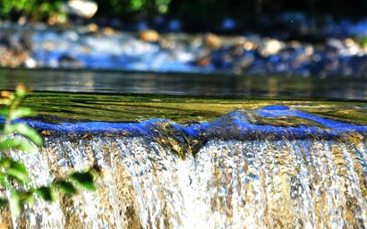 Flowing water in a stream.
