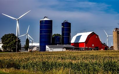 Farm buildings and wind mills behind a maize field.