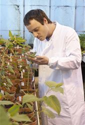Plant Genetic Resources Abstracts