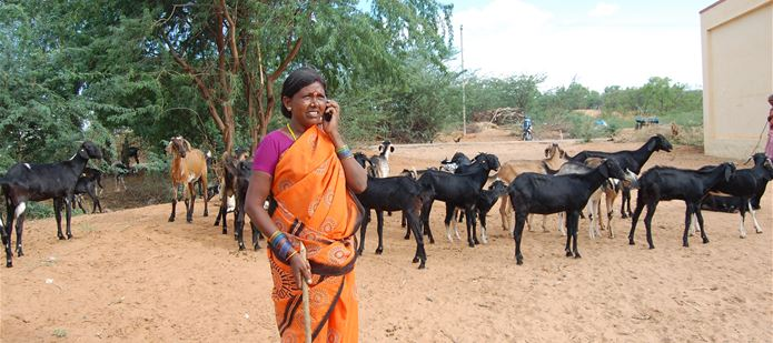 New Nutrition Knowledge Bank gives Africans and Asians direct access to expert nutritional advice on their mobile phones