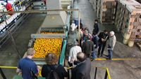 Delegates of South Africa Walk the Chain activity visiting Crocodile Valley Citrus Packhouse in Nelspruit, South Africa