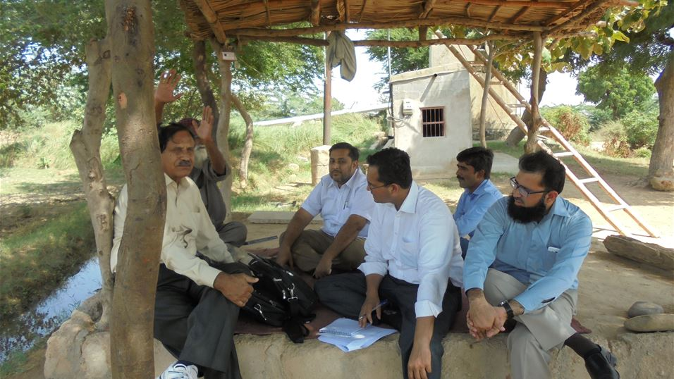 The project team meet with a papaya grower