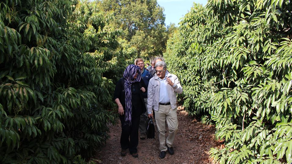 Delegates of South Africa Walk the Chain activity visiting farm of HAL Nelspruit, South Africa