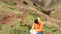 1. Studying soil microbes associated with the island
