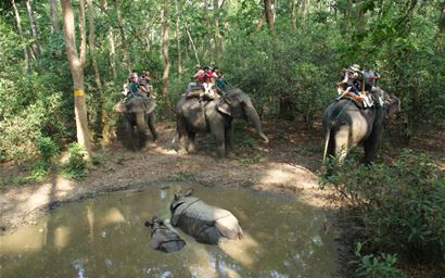 Elephant riding in Chitwan National Park