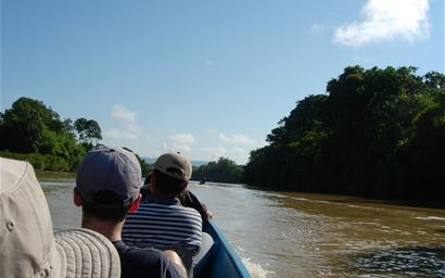 Wildlife viewing from a small boat on the Kinabatangan River