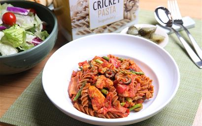 a dish of pasta made with insect ingredients - cricket powder