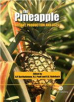 The Pineapple: