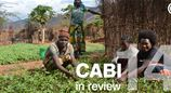 Looking back at a year of impact: CABI in Review 2014section header image