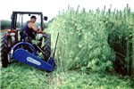 Fibre hemp harvesting with a mowing machine