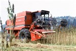 Hemp harvesting with a combine fitted with a cutting head