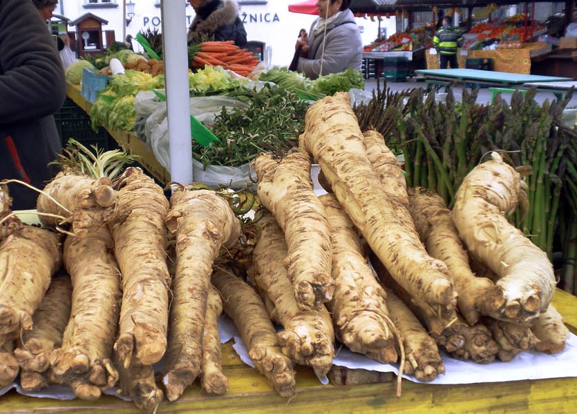 Armoracia rusticana (horseradish); roots (hren) for sale on a local market. Ljubljana, Slovenia. March 2016.
