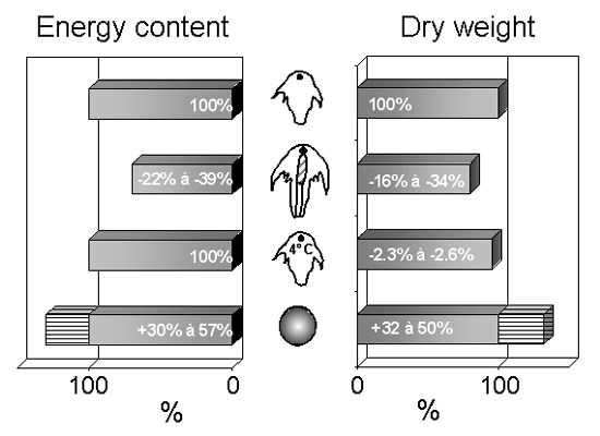 Energy content and dry weight of instar I, instar II, cold stored nauplii and decapsulated cysts (modified from Léger et al., 1987a).