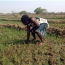 SAIRLA Ghana National Learning Alliance