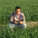 Seeing is Believing - empowering farmers with smartphone imaging
