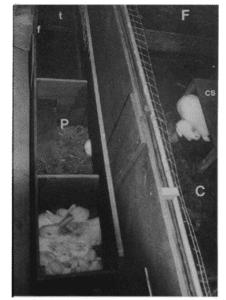 Fig. 14.7E. (f)