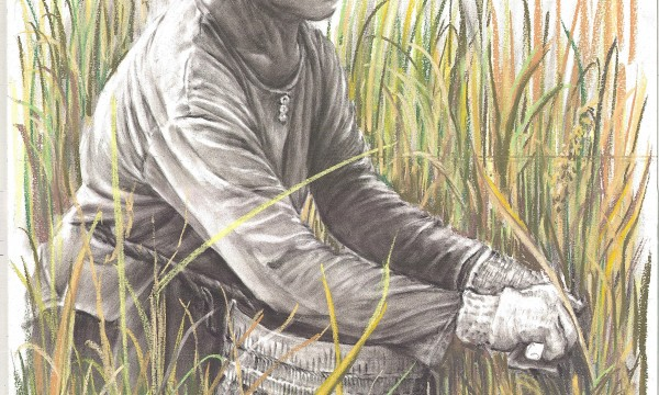 Pencil drawing of man in field