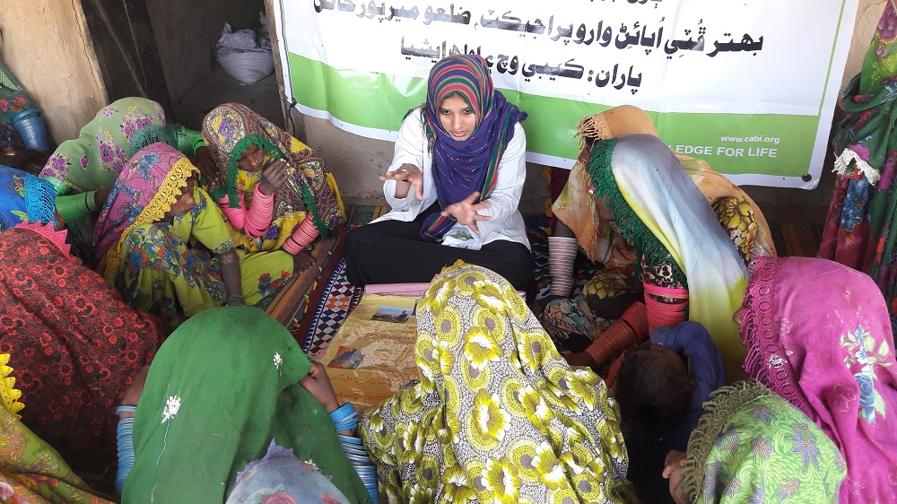 Better Cotton Initiative in Pakistan