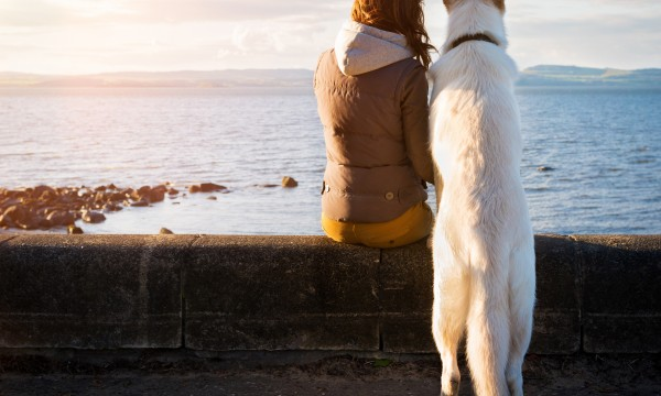 Girl and dog at seaside looking out