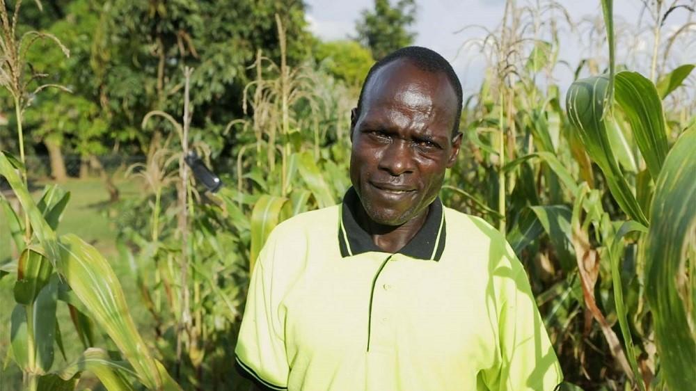 Timothy Okumu, a farmer in Bungoma, who used the mating disruption pheromone on his farm (Credit: CABI).