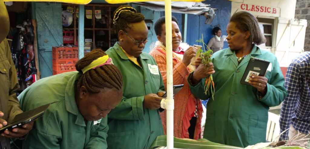 Farmer attending Plantwise clinic in Kenya with three plant doctors