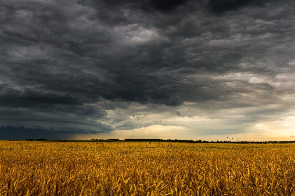 Dark storm cloud above field