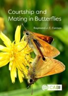 Courtship and Mating in Butterflies