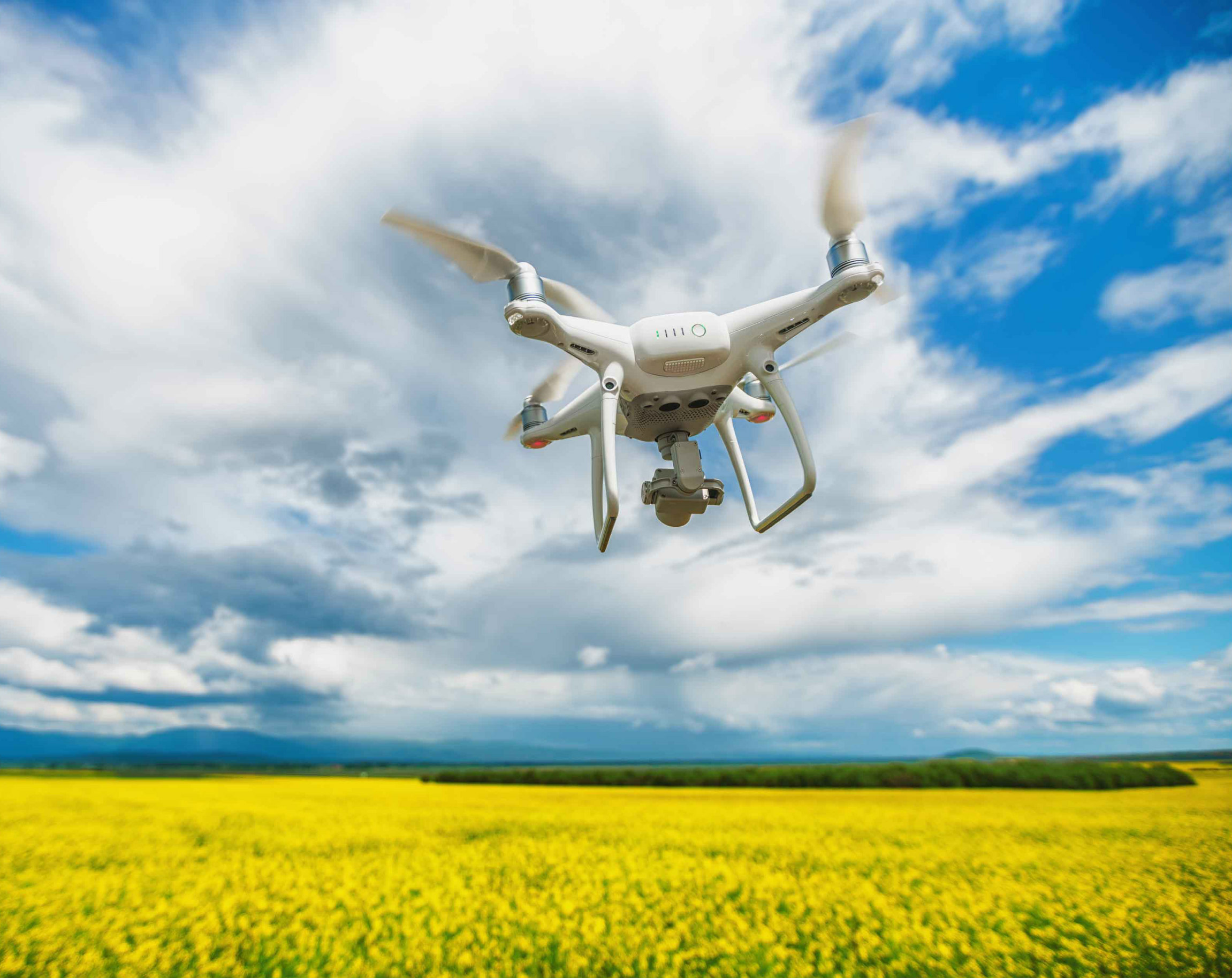 Robotics and precision agriculture
