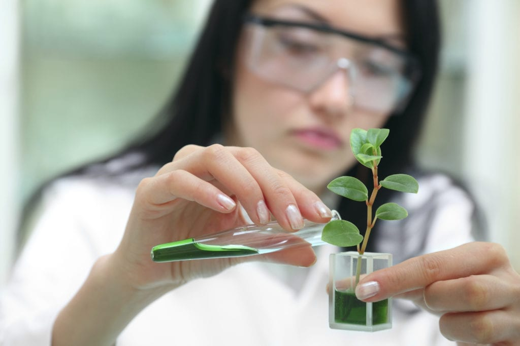 Female scientist with plant