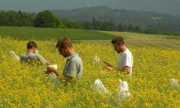 Students carrying out an experiment in a swiss field